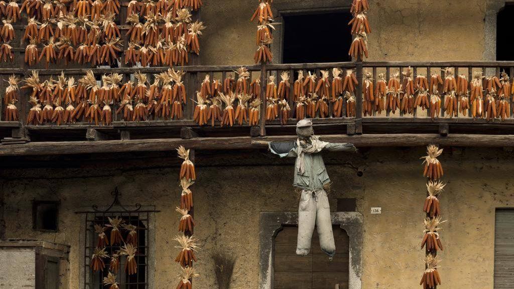 Pannocchie appese a essiccare sulle case di Storo (© Consorzio Turistico Valle del Chiese)