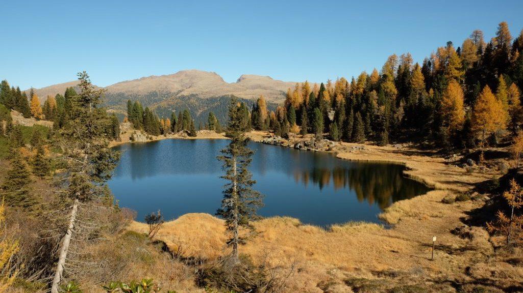 Lago di Colbricon inferiore (Ph. Mirko Ropelato)