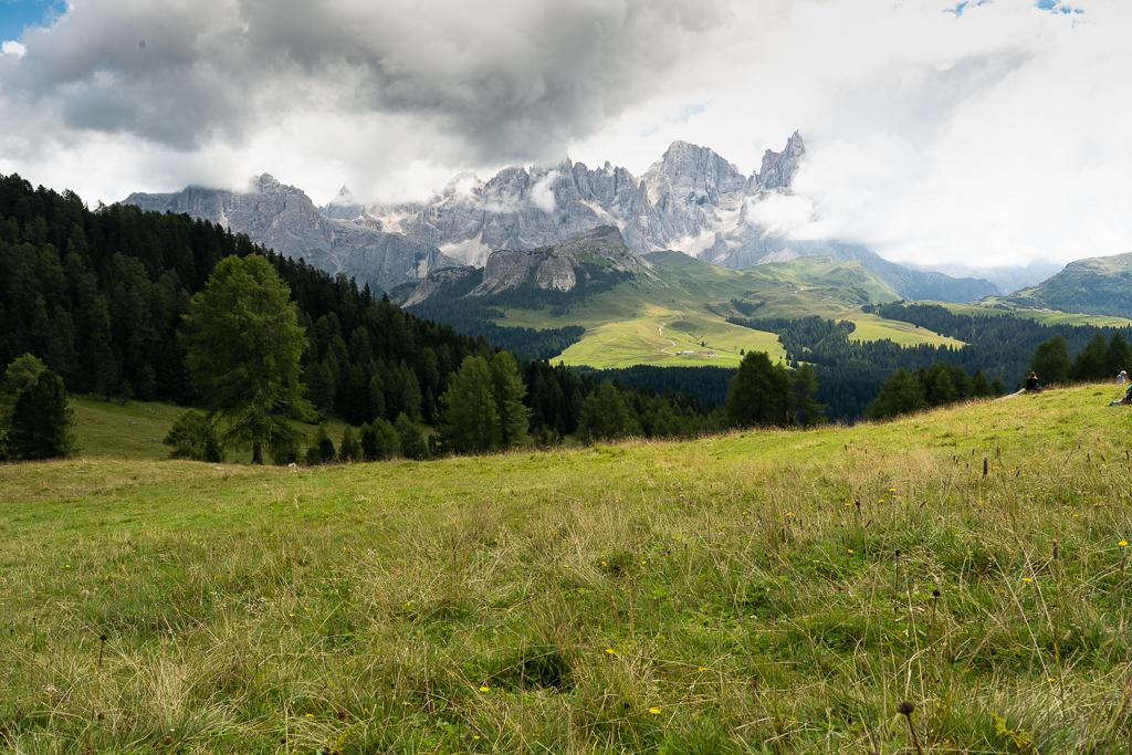 Veduta delle Pale di San Martino da Malga Bocche (Ph. Mirko Ropelato)