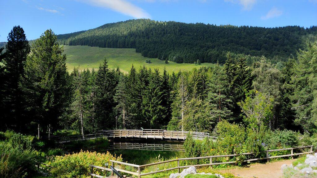 Giardino Botanico Alpino Viote