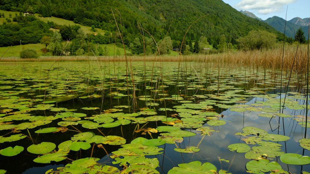 Lago d'Ampola (Ph. Mirko Ropelato)